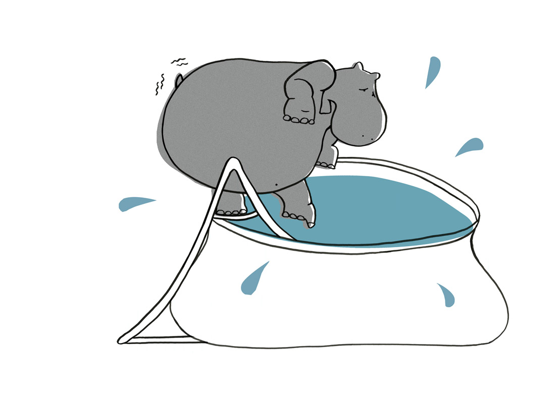 ellen vesters nijlpaard hippo